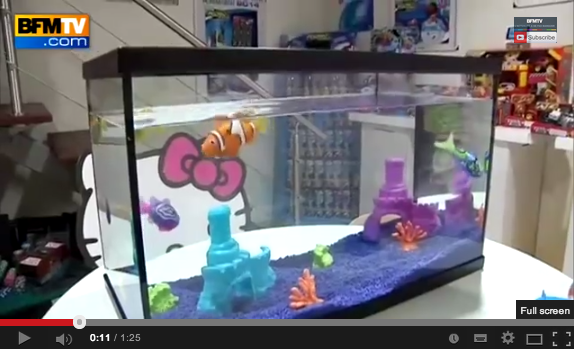 Nos poissons préférés débarquent sur BFMTV